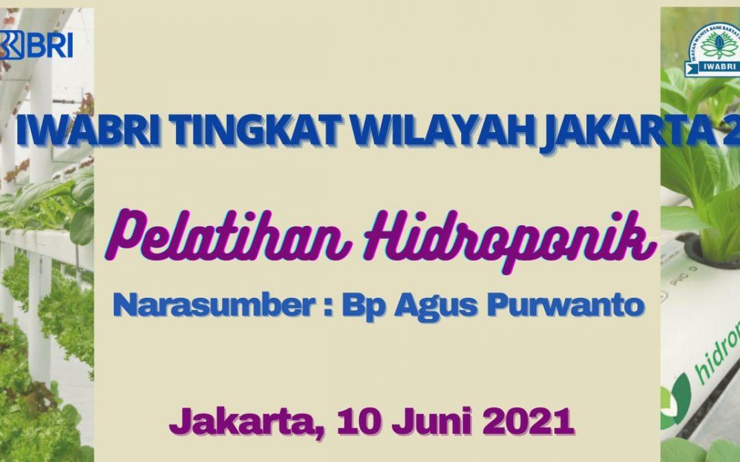 Pelatihan Hidroponik IWABRI Tingkat Wilayah Jakarta 2 (Juni 2021)